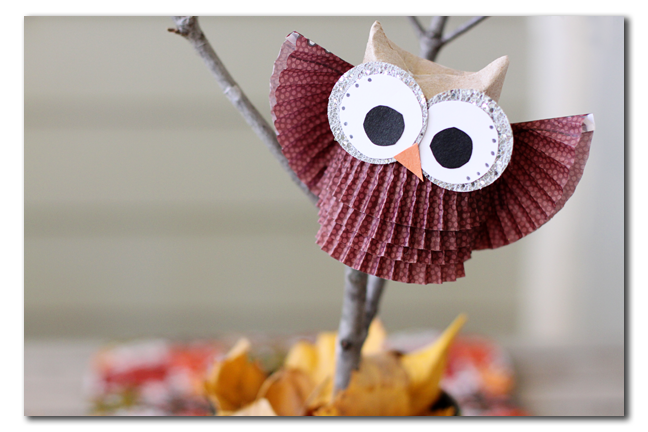 owl cupcake liner brown