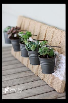 Mini Succulent Hanging Garden