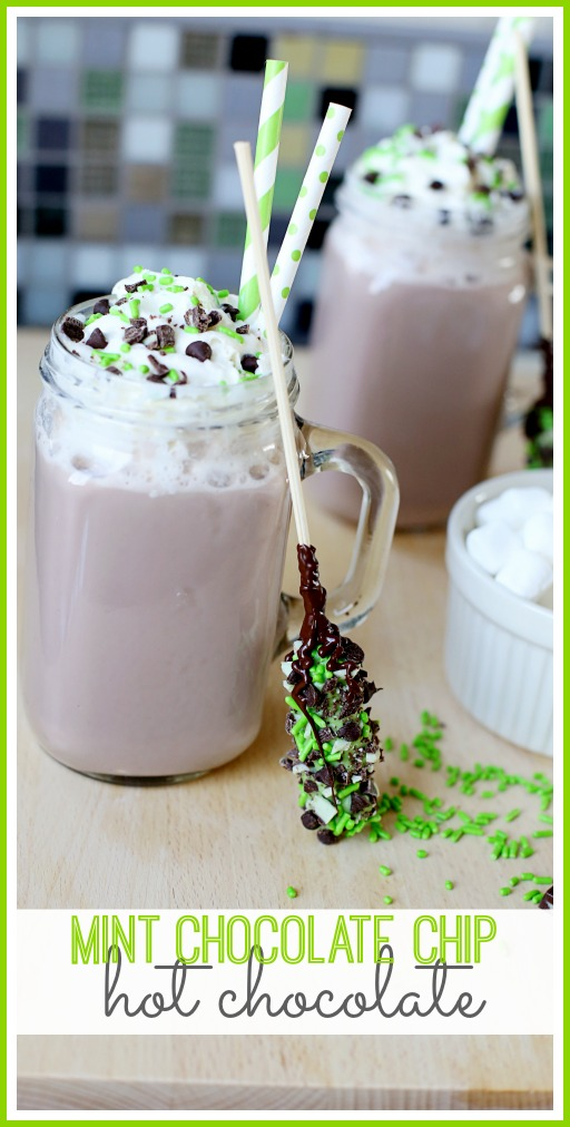 how to make mint chocolate chip hot chocolate