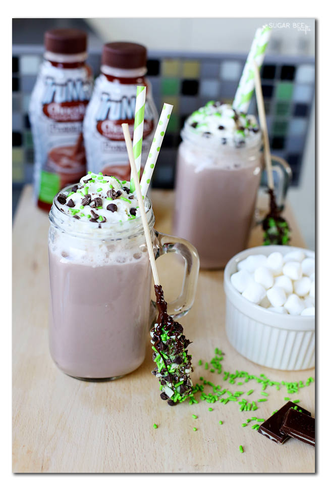 mint chocolate chip hot chocolate idea recipe