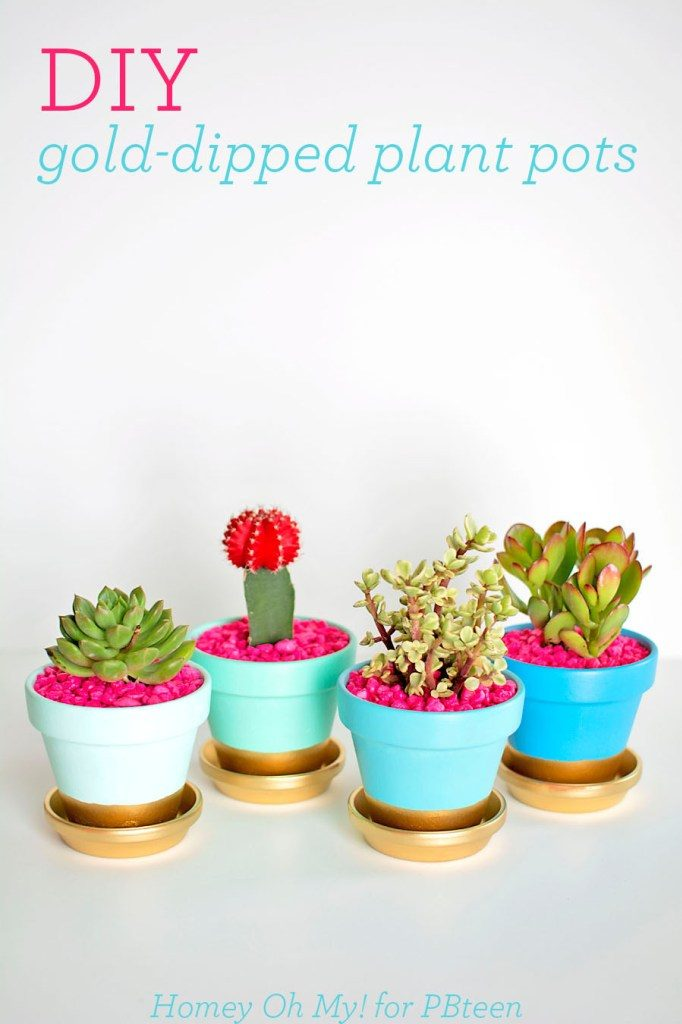 DIY-Gold-Dipped-Plant-Pots41
