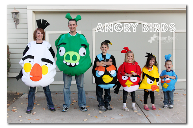 angry birds family costume
