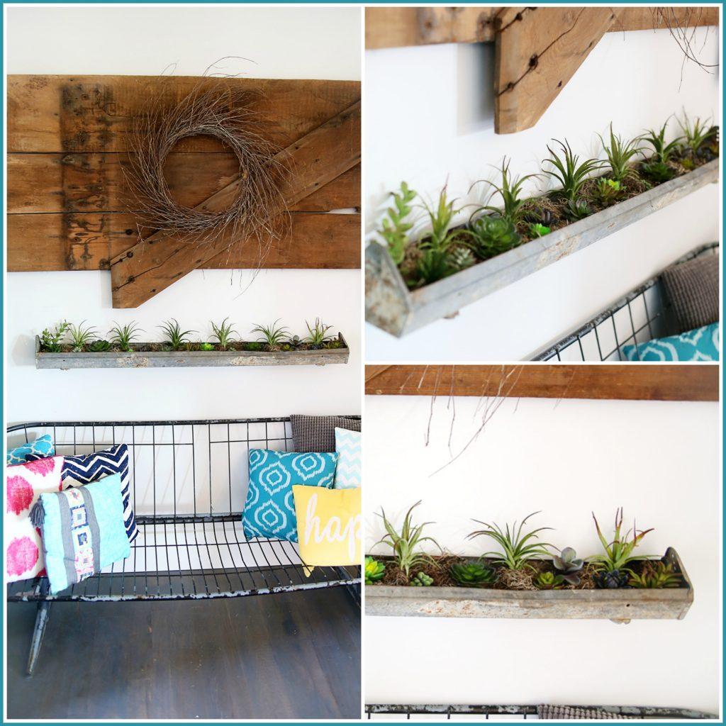 succulent planter diy collage