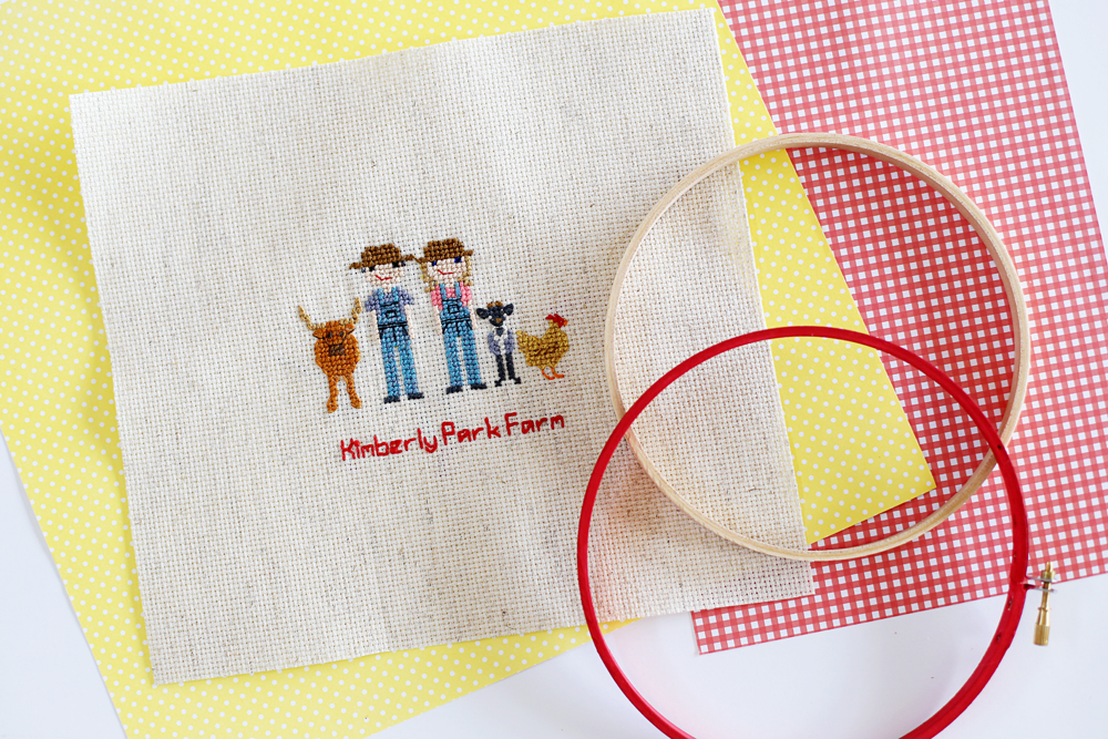 cross stitch hoop idea