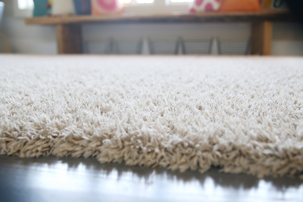 fluffed carpet