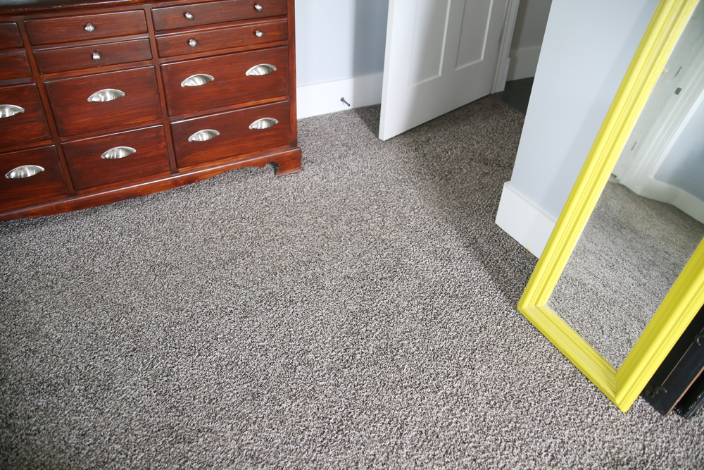room carpet after stanley steamer