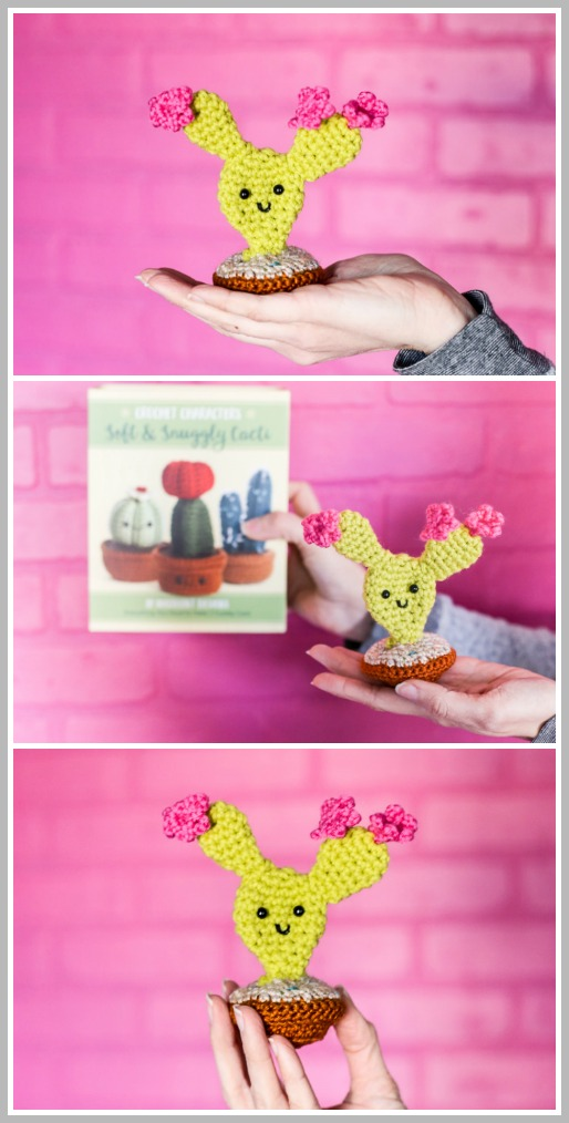 crochet cactus pattern kit
